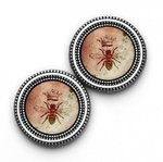 Magnetic Button Set - Queen Bee Prints